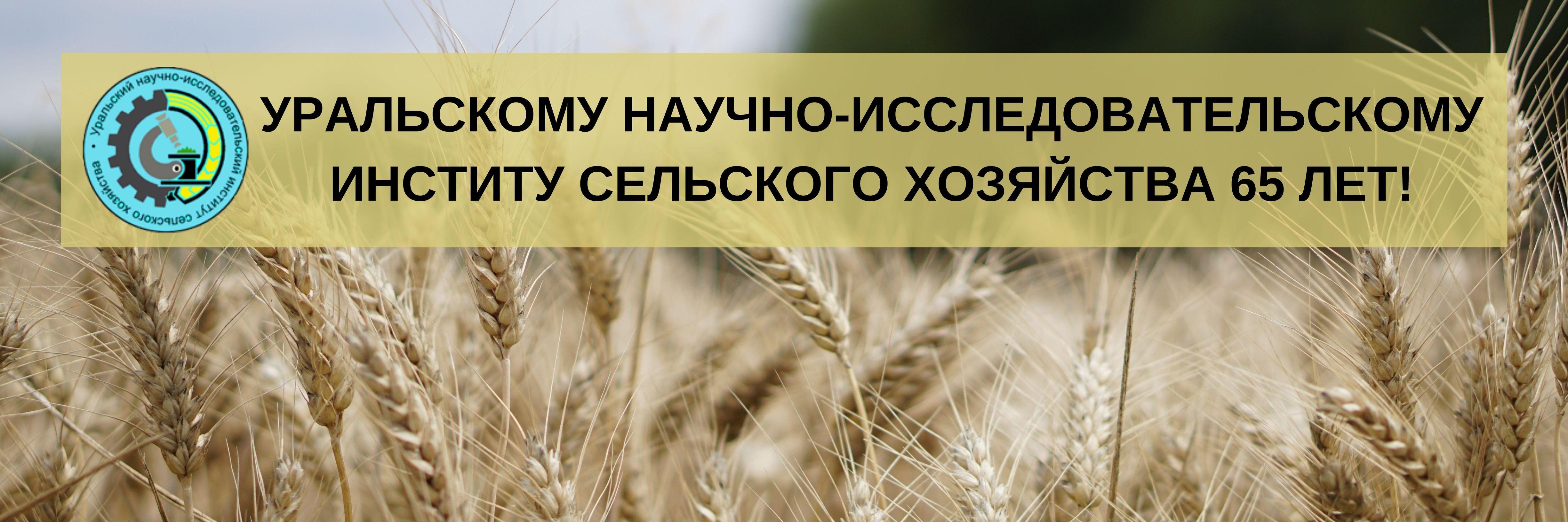 Уральскому НИИСХ 65